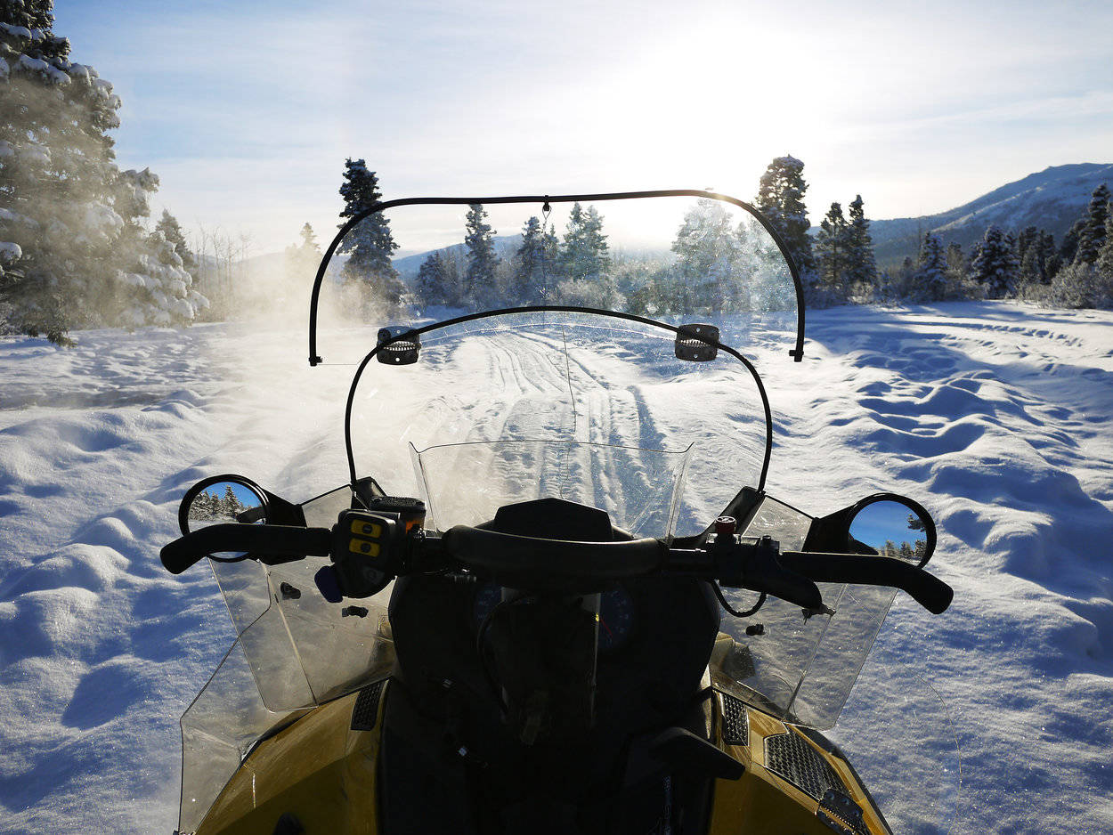 Take on the snowy trails