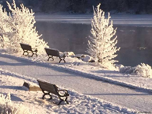 Enjoy a winter stroll on the Yukon River