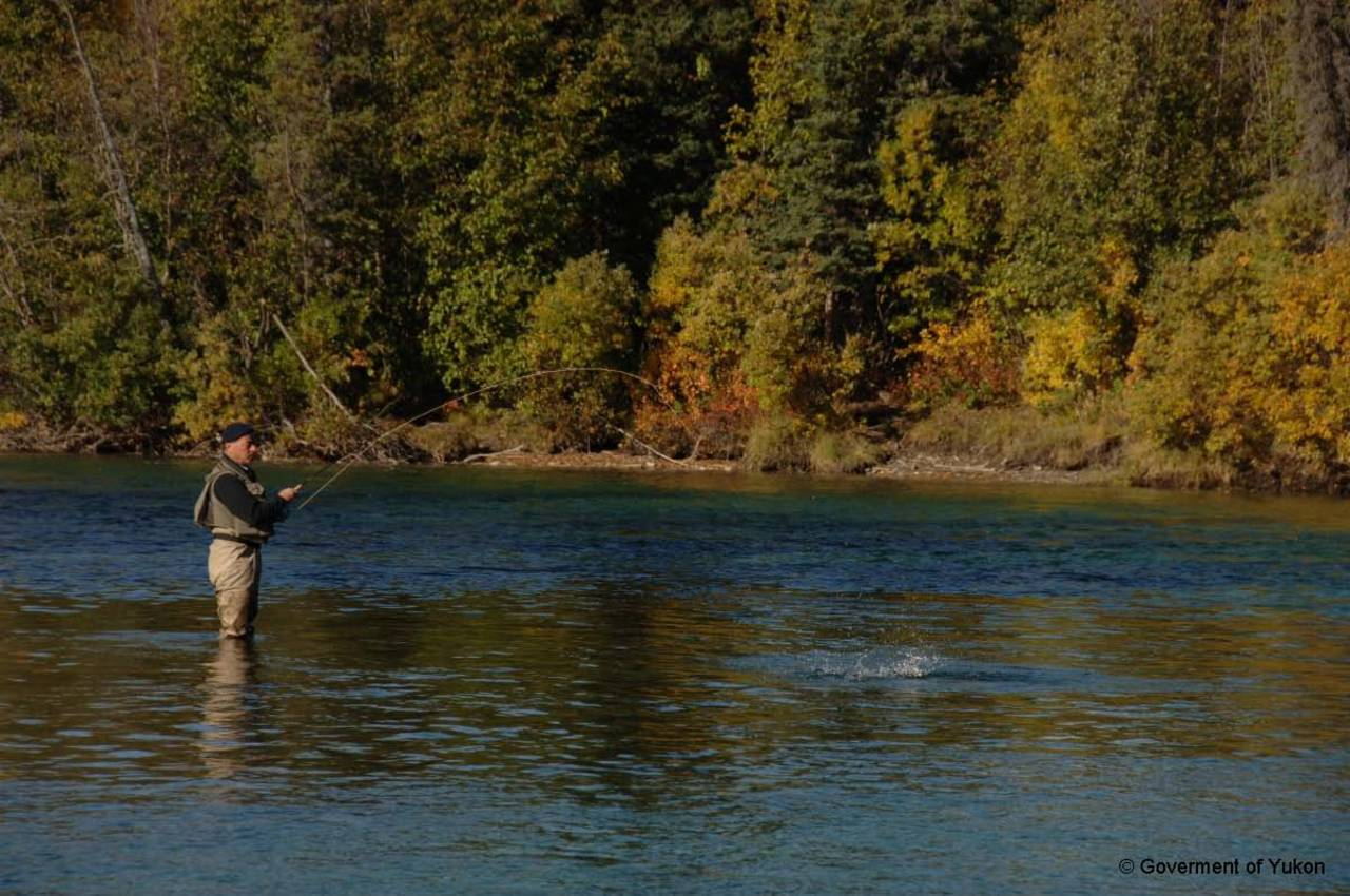 Try some local fishing spots